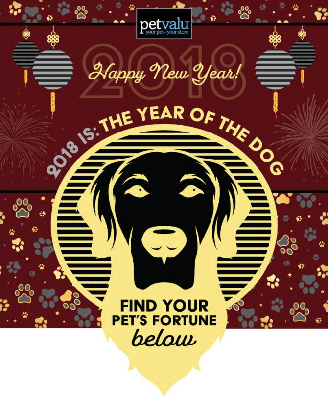 Overwatch's Lunar New Year Event Returns for the Year of the Dog